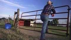 Cowboy Rancher, livestock on the ranch - stock footage