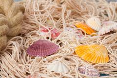 fishing net on wooden background - stock photo