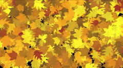 4k Abstract Gold maple plants leaves,lush autumn season leaf nature wind breeze Stock Footage