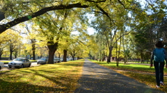 Autumn walk Melbourne, park Stock Footage