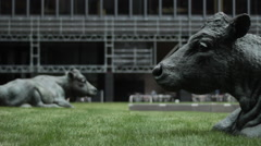 Statues Of Cows In Office Park - stock footage