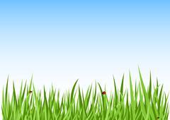 Grass green background Stock Illustration