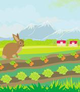 Stock Illustration of rural landscape with hare