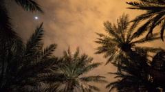 Desert stars starlapse cosmos sahara astronomy Stock Footage