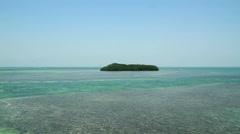 Mangrove Island Shot Two Fl Keys Stock Footage