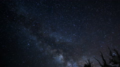 4K Astro TimeLapse of MilkyWay & Ancient Bristlecone Pine Trees at Dawn -Pan R- Stock Footage