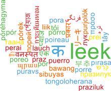 Leek multilanguage wordcloud background concept - stock illustration