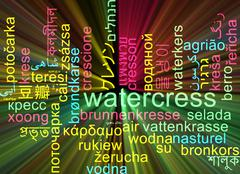 Watercress multilanguage wordcloud background concept glowing - stock illustration