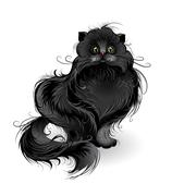fluffy black cat - stock illustration