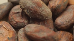 Large plans of raw cacao beans. Close up slow panorama. - stock footage