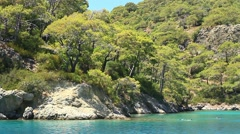 Blue Lagoon Beach and pine trees at Oludeniz resort at Fethiye, Turkey Stock Footage