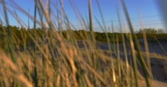 Sunny beach with sand dunes and blue sky Stock Footage