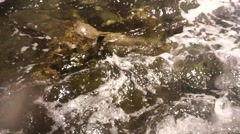 Clear sea water with brown stones at the bottom Stock Footage