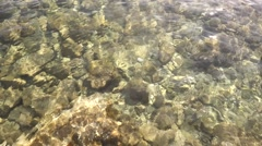 Сlear sea water with pebbles at the bottom 3 shots in 1 video Stock Footage