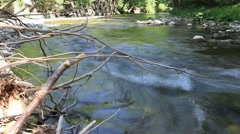 Stream in forest ,clean fresh cold water,artistic video background Stock Footage