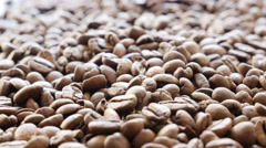 Coffee beans roasted and ready to be grinded slow tilting shallow DOF 4K 2160 Stock Footage
