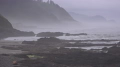 Oregon, Pacific Coast Highway misty day Stock Footage