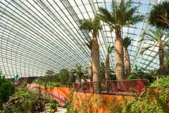 SINGAPORE - 01 JUN 2013: Interior of the Flower Dome, a massive, 1.2 hectare  - stock photo