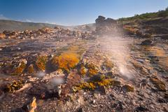 Long exposure detail of colorful hot springs at Lake Bogoria in Kenya. - stock photo