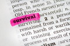 Dictionary definition survival - stock photo