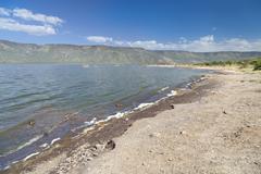 Lake Bogoria shore in Kenya, the hot water is green from algae. - stock photo