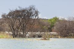 A flooded hotel resort at Lake Baringo in Kenya. Many resorts where destroyed Stock Photos