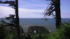 Sea Arch ,Oregon coastline Stock Footage