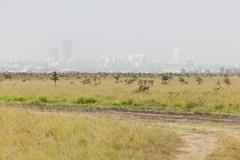 Landscape in Nairobi National Park in Kenya with the skyline in the backgroun - stock photo