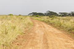Dirt road in Nairobi National Park in Kenya - stock photo