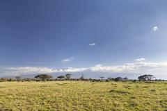 Kilimanjaro with snow cap seen from Amboseli National Park in Kenya. Stock Photos