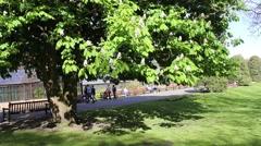 Beautiful Botanic Garden in Glasgow, UK, footage Stock Footage