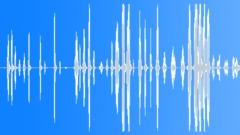 Laugh 009 - sound effect