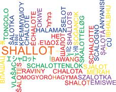 Shallot multilanguage wordcloud background concept Stock Illustration