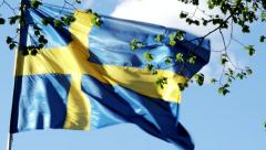 Swedish flag windy day with leaves in front of it 1026 Stock Footage
