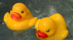 Two yellow rubber ducks Stock Footage