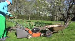 Man cut mow lawn cutter mower put grass into rusty barrow. 4K Stock Footage