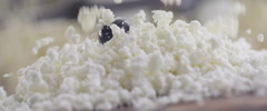 Blueberries and cottage cheese slow motion 4 Stock Footage