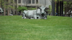 Statues Of Cows In Office Park 2 Stock Footage