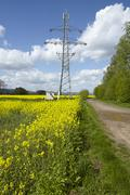 Green power - Colza field and transmission tower Stock Photos