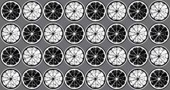 Seamless pattern of black and white lemon slices. - stock illustration
