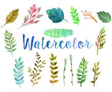 Vector watercolor aquarelle branches and leaves. - stock illustration