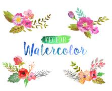 Vector watercolor aquarelle flowers and leaves. - stock illustration