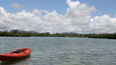 Mangroves on mauritian island and red kayak Stock Footage