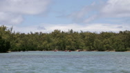 Stock Video Footage of people kayaking near mangroves