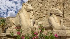 Stock Video Footage of Karnak Temple