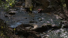 Water pollution in river with trash - stock footage