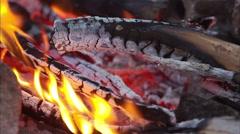 Bonfire, campfire Arkistovideo