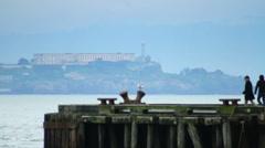 Alcatraz Island Tourists Stock Footage