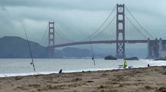 Baker Beach Dog Walk Stock Footage