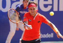 Spanish tennis player David Ferrer - stock photo